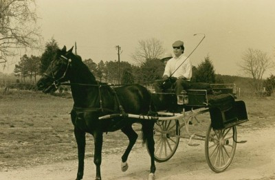 Jack Ferguson drives a one horse cart a looong time ago.